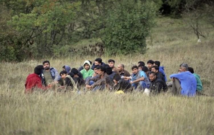 migranti-protest.jpg